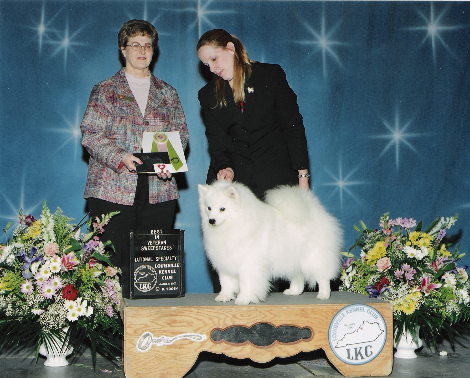 Maggie still going strong at 13 yrs Winner of Veteran Sweeps 2007 AKC National Louisville Kentucky